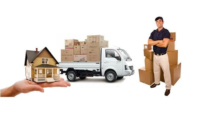 professional packers and movers to check